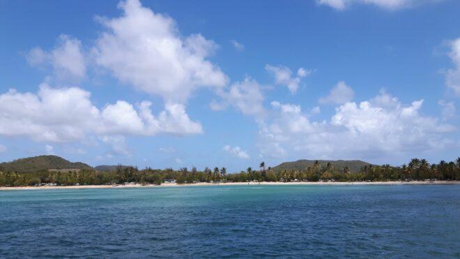 Einer der schönsten Strände auf Martinique: Plage des Salines