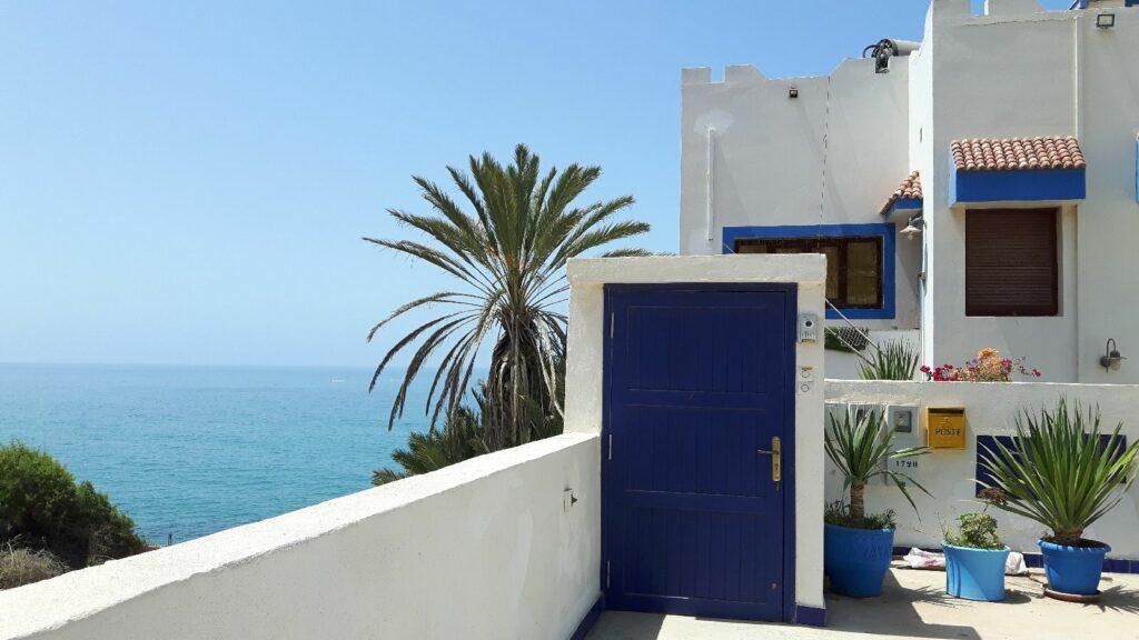 Stillleben mit Tür und Palme