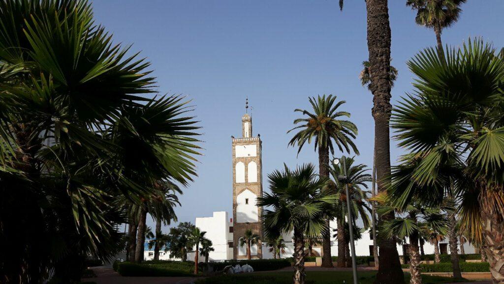 Palmen und Minarette
