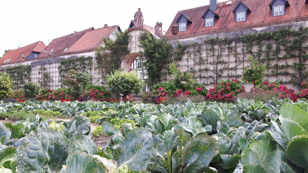Ein Blick über den Klostergarten